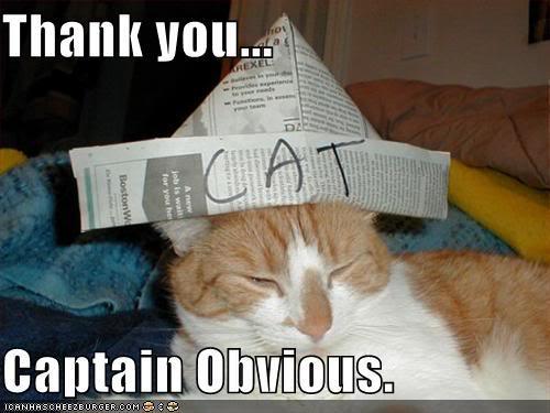 [Image: captobviouscat.jpg]